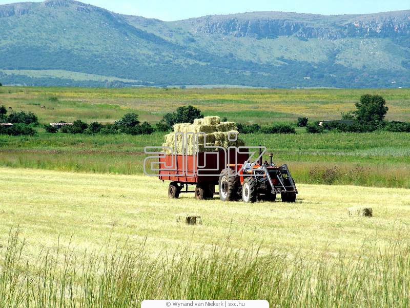 Comprar Aparatos de cultivar terrenos Mod 452