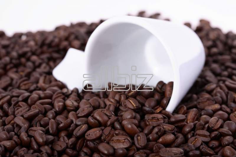 Comprar Caffè frio con Coco