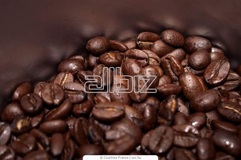 Comprar Cafe Barista