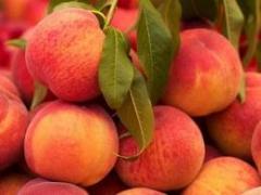Nectarines y Duraznos