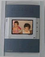 Video porter