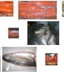 Venta de salmón y trucha
