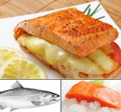 Salmon Coho