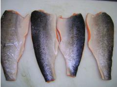 Carne de Salmon Chileno