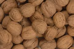 Nuez/ Walnut Serr