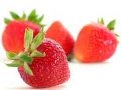 Frutillas frescas