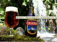 Cerveza chilena como bebida alcohólica,