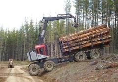 Autocargador forestal