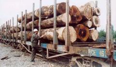 Vigas de apoyo de madera