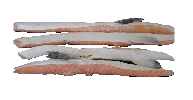 Salmon Selly Loins