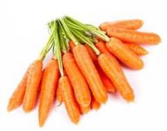 Seeds of carrot