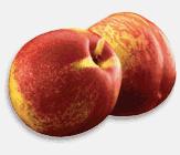 Nectarin August Red