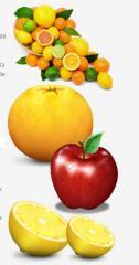 Frutas tropicales, Limones