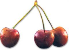 Frutas Frescas: Cerezas
