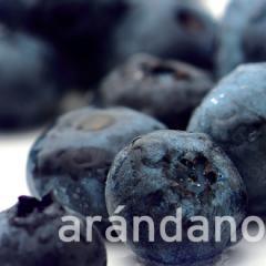 Bilberry frozen