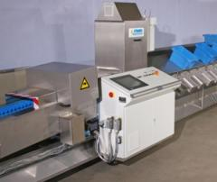 Sorting machines for vegetables