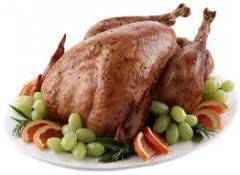Turkey fillet