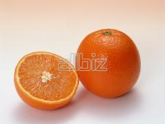 Naranja Mancuniana
