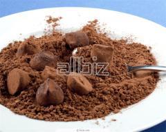 Theobroma cacao var. typica Cif