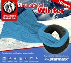 Nuevo Neumático Winter
