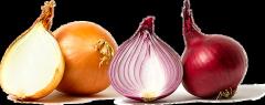 Cebolla 3 variedades (Valenciana, Concreto y Morada)