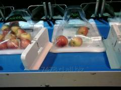 Manzanas Frescas Diferentes Variedades