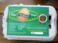 Huevos de Campo de Gallinas Felices Free Range