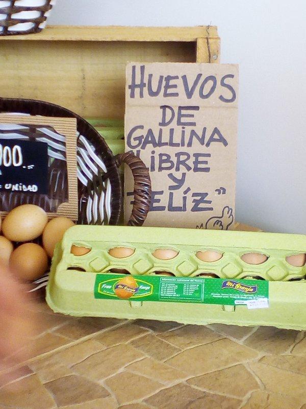 huevos_de_campo_de_gallinas_felices_free_range