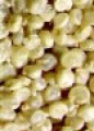 Quinoa Regalona Baer