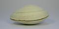 Almeja Tawera Gayi y es extraida en aguas del sur de Chile.