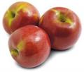 Manzana variedad Buckeye