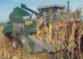 Cosechadora de maíz, porto y maní