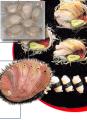 Abalon en conserva