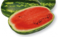 Seeds of watermelon