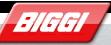 Comercial Biggi, S.A, Santiago
