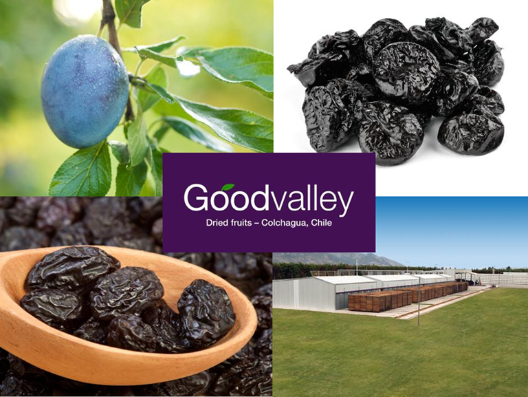 Goodvalley Dried Fruits Company, Santiago