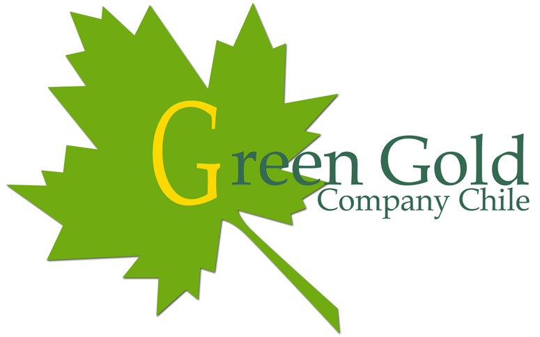 Green Gold Company Chile, S.A, Santiago