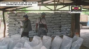 Pedido Exportación de carbón vegetal