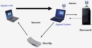 Pedido Servicios de conexión de IP móvil