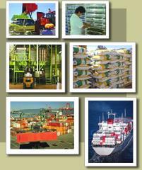 Exportación de Trigo
