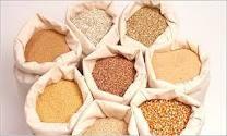 Exportación de trigo y cereales