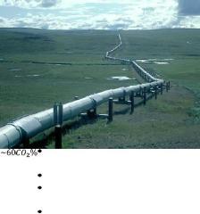 Transportes de Gas Natural