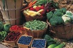 Servicios de información y análisis de mercado de la fruta fresca