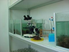 Servicios de laboratorio de ecotoxicología