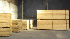 Producción productos forestales