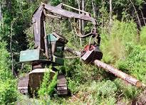 Suministro de madera