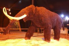 Animales asombrosos y la era del hielo