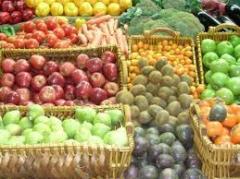 Asistencia técnica en cultivos tradicionales, berries y frutales