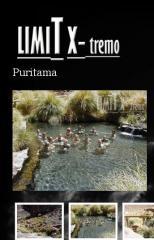 Tours Puritama