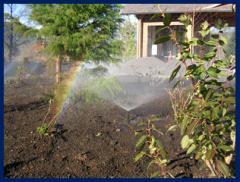 Servicios de instalación de sistemas de riego automático